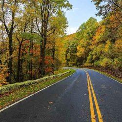 Entretien routier et forestier