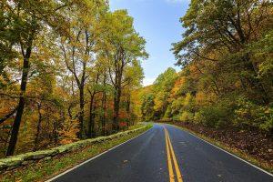 Entretien routier et forestier_Holbec